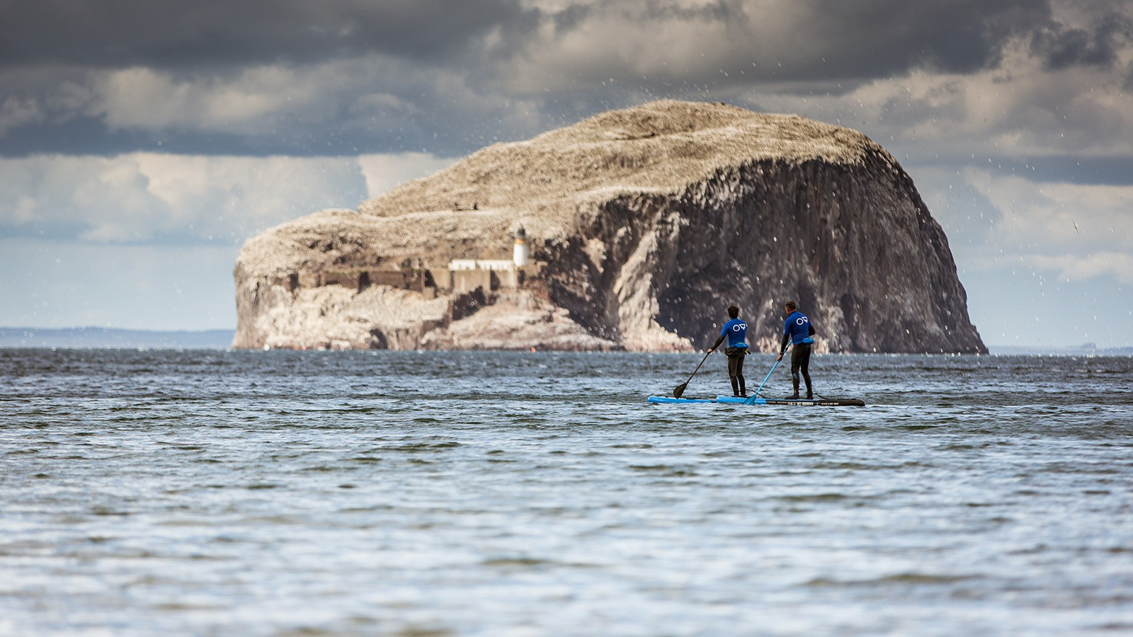 paddleboarding at bass rock east lothian Scotland 1600