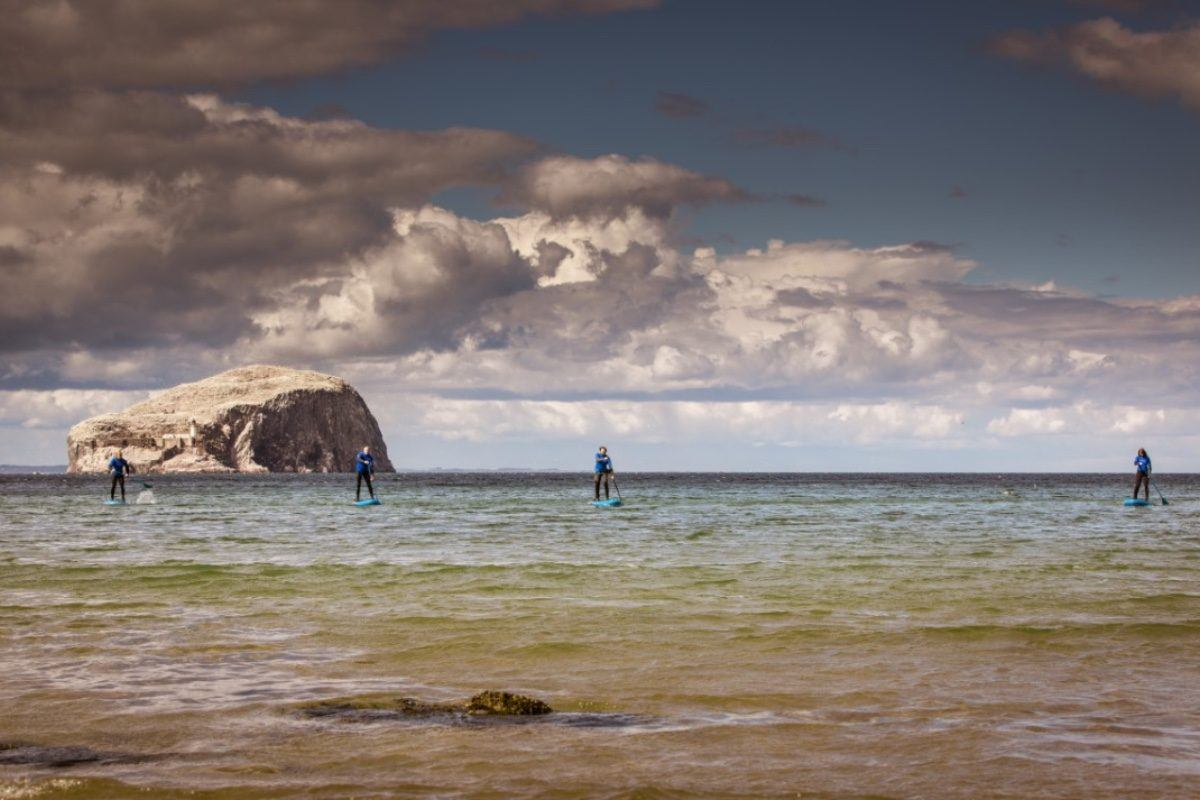 paddle boarding SUP by the Bass Rock close to Seacliff Beach North berwick and Dunbar in East Lothian